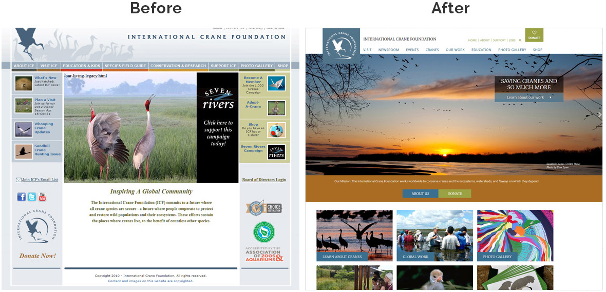 Before & After Screenshot of International Crane Foundation's Home Page