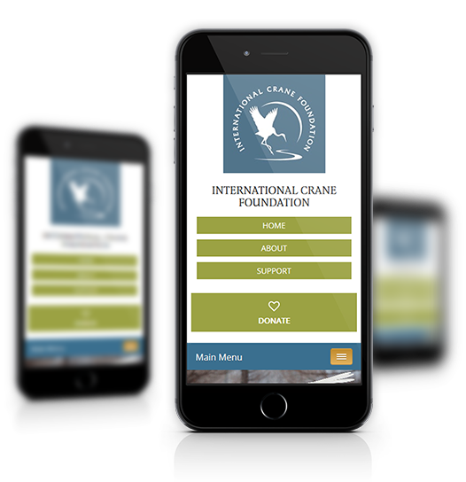 Mobile View of International Crane Foundation's Home Page