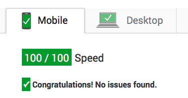 What on Your Website Affects Your Google PageSpeed Score?