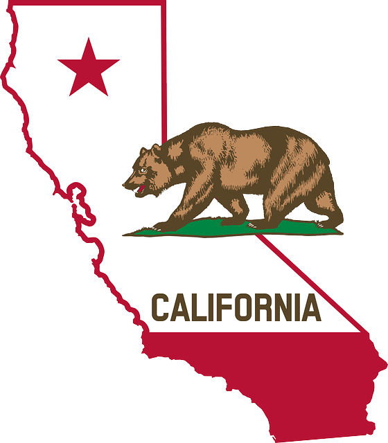 California Privacy Policy Template